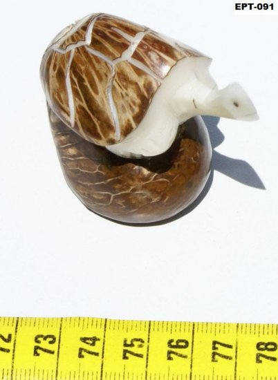 Hand Carved Tagua Figurine Reptile Turtle, Art Ecuador