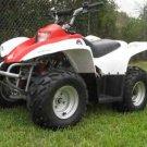 Premium ATV 70cc