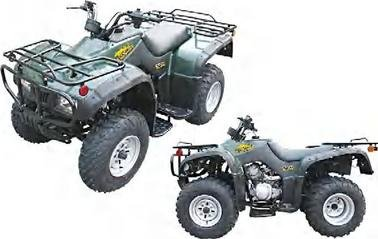 Big ATV-10-250cc