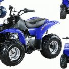 Dirt Devil 70cc-Fully Automatic