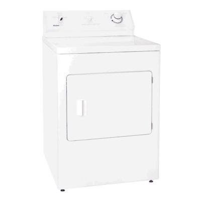 Super Capacity Electric Dryer 22 lbs.