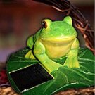 Frog On Lily Pad Solar Lamp