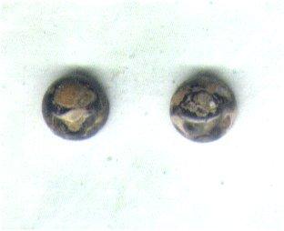 Leopardskin Rhyolite Gemstone & Sterling Silver 6mm Stud Earrings - PreciousThings.ecrater.com
