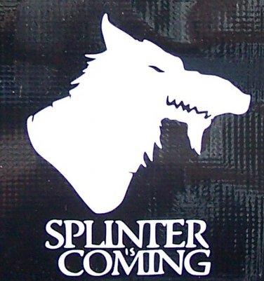 TMNT:Splinter is Coming