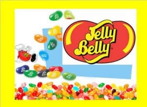 9 lbs.Jelly Belly Beans Bulk Candy FREE Labels & Ship