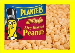 6.5 lbs. Dry Roast Peanut Bulk Candy FREE Labels & Ship
