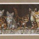 *Cat Cross Stitch Kit   BARDYARD KITTIES Dimensions 2004