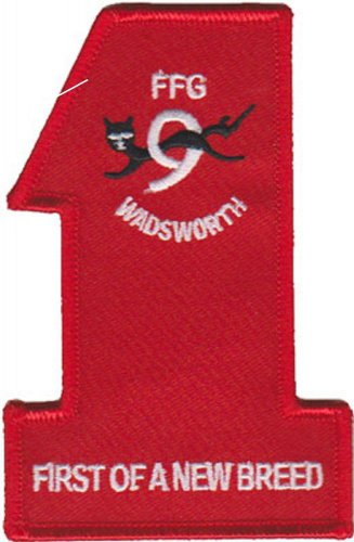 USMC USS Wadsworth FFG Patch