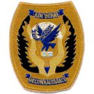 US Army 11th Airborne Reconnaissance Patch