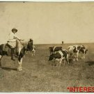 New Studio Quality Antique RP Photo: Girl Cowgirl, Cowboy, On Horse with Cattle
