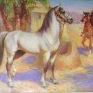 1923 ARABIAN HORSE PRINT by EDWARD H MINER Plate-10