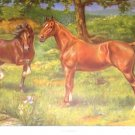 1923 HACKNEY HORSE PRINT by EDWARD H MINER Plate-11