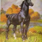 1923 GERMAN COACH HORSE PRINT by EDWARD H MINER Pl-12