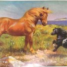 1923 SUFFOLK HORSE PRINT by EDWARD H MINER Plate-14
