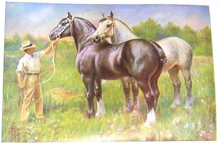 1923 PERCHERON HORSE PRINT by EDWARD H MINER Pl-18