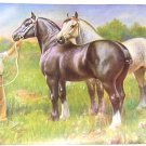 1923 PERCHERON HORSE PRINT by EDWARD H MINER Pl-18