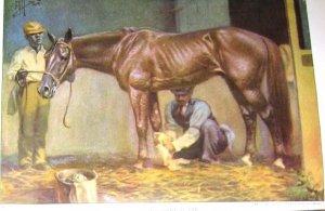1923 STANDARD BRED HORSE PRINT by EDWARD H MINER Pl-20