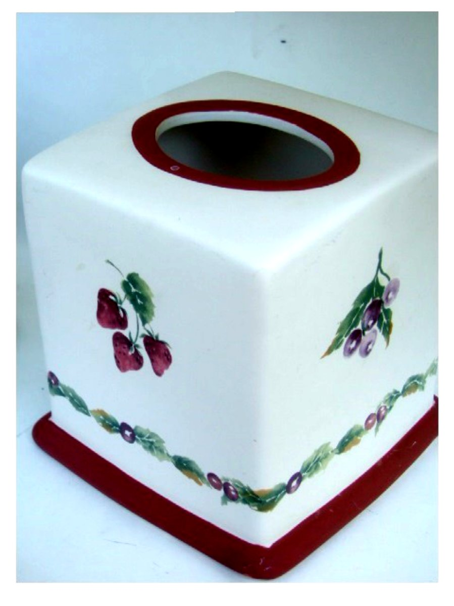 Jamberry Strawberries Cherries Tissue Box Cover