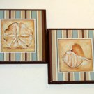 Sand Dollar Sea Shell Plaques Wall Beach Decor