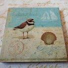 Beach Birds Seashells Wall Plaques Set