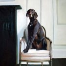 "Dignified dog on Chair 20"" x 24"" Original Oil"