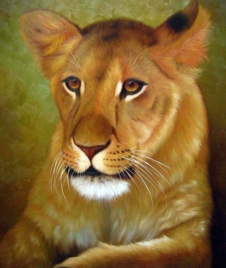 "Lioness the wild Queen 20"" x 24"" Original Oil"