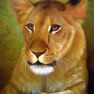 "Lioness the wild Queen 20"" x 24"" Original Oil"