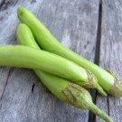 Thai Green Long egg plant 100 seeds heirloom  vegetable