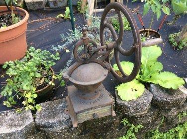 Antique Goldenberg Cast Iron Single Wheel Coffee Mill #2