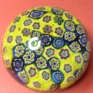 Unusual Colored Vintage Italian Murano Art Glass Paperweight, #11