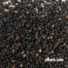 Elder Berries - 1 Lb