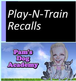 Play-N-Train Recalls