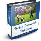 Teaching Intermediate Trick Classes