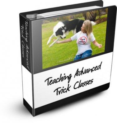 Teaching Advanced Trick Classes