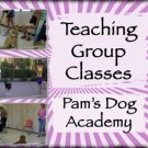 Teaching Group Classes