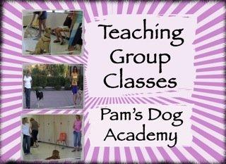 Teaching Group Classes