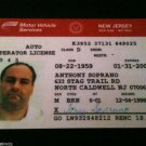 THE BEST Tony Soprano Screen Accurate Drivers License Prop Tv Show