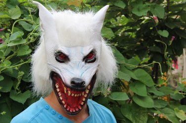 White Creepy Wolf Head Face Animal Costume Halloween Party Prop Carnival Mask