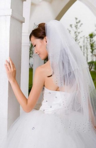 Wedding Crystal Edge Cut Lace off white LaceSoft Net Tulle Veil