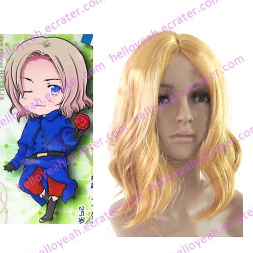 Cosplay wigs - Francis Bonnefeuille  wigs from Axis Powers HETALIA