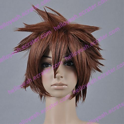 Cosplay Wig Inspired by Kingdom Heart Sora
