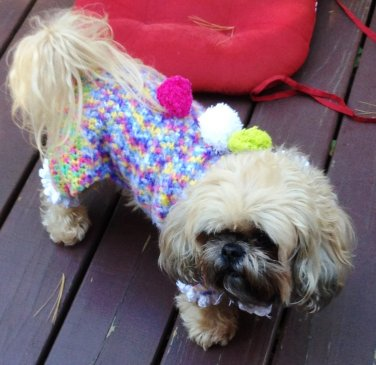 PATTERN - Clown Costume for Dogs