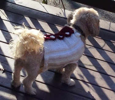 Two Colored Knitted Sweater for Dogs