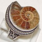 Fossil Madagascar Ammonite 925 Sterling Silver Handmade Ring 8.5