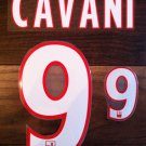 EDINSON CAVANI 9 PARIS SAINT GERMAIN 2013 2014 NAME NUMBER SET NAMESET KIT PRINT