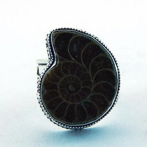 Beautiful  Handcrafted Ammonite .925 Sterling Silver Ring Sz-9.5 R-57L5