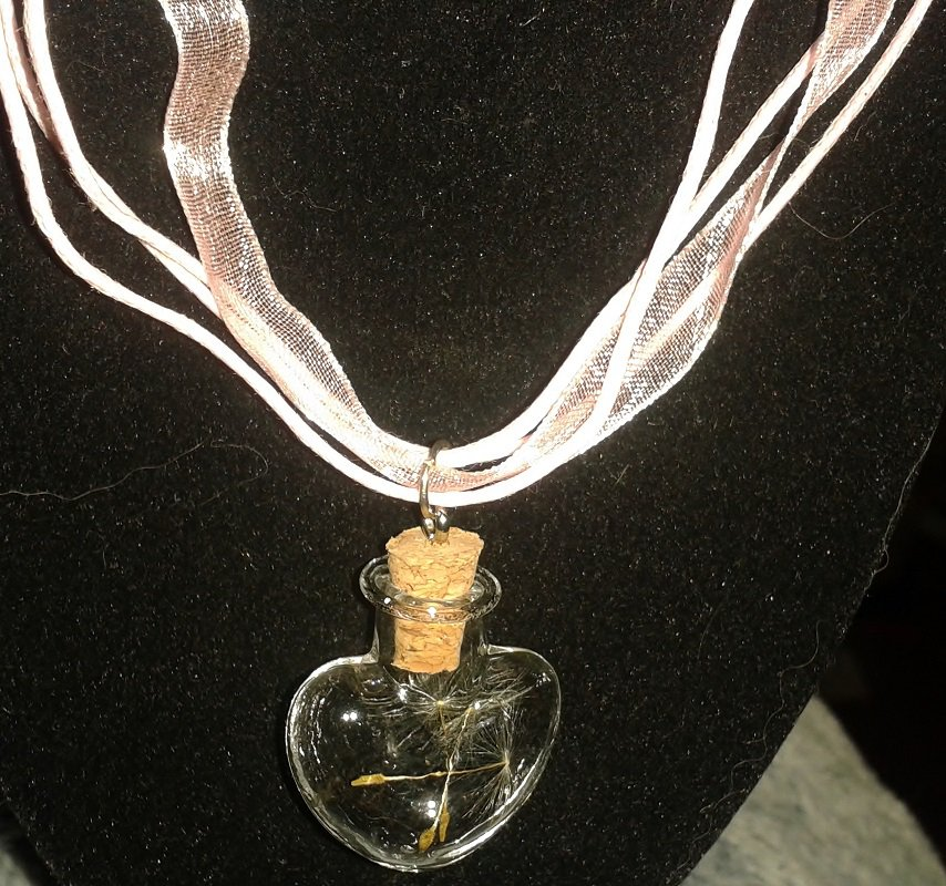 The wishing necklace....