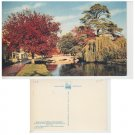 Gloucestershire Postcard Bourton on the Water. Mauritron #319