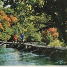 Tarr Steps Somerset Postcard. Mauritron PC374-213566