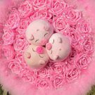 New Romantic Pig Bouquet for Wedding,Valentine, Birthday Gift- Pink